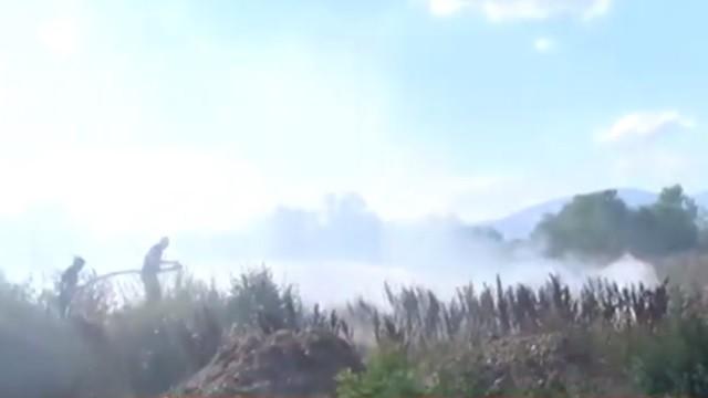 ЗА ДА ОПРАВДААТ НЕСПОСОБНОСТ  ТРУЈАТ ЛУЃЕ  Општина Аеродром изрази сомневање дека некој намерно запалил ливада со сува трева во Ново Лисиче