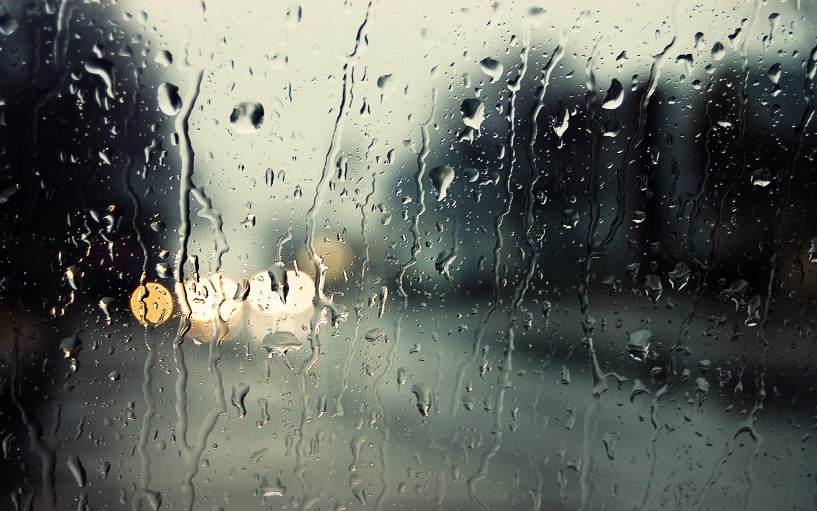 Од попладне врнежи од дожд