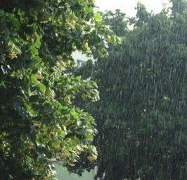 ВРЕМЕТО ДЕНЕС:Променливо облачно со локални врнежи од дожд