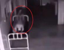 (Видео)КОГА ДУШАТА ГО НАПУШТА ТЕЛОТО: Болнички камери снимија доказ за живот по смртта?