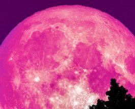 РОЗОВА МЕСЕЧИНА: Пристигна розовата месечина – еве што значи