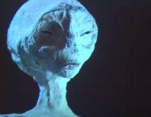 (Видео)ДОДЕКА ВО МАКЕДОНИЈА АБОЛИЦИРАН КРИМИНАЛЕЦ СТАНА ПРЕМИЕР: Во Перу пронајдени мумифицирани тела на вонземјани!